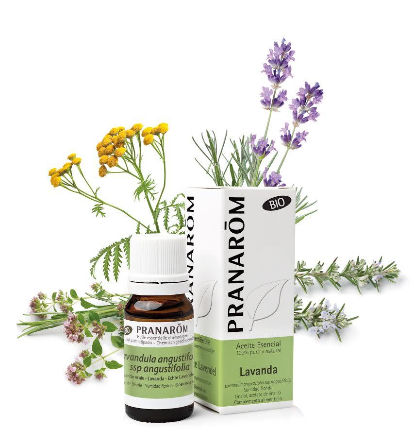 8ª Jornada Aromaterapia: defensas, ansiedad, insomnio... para interesados en el mundo de los aceites esenciales: Coliseum - Pranarom