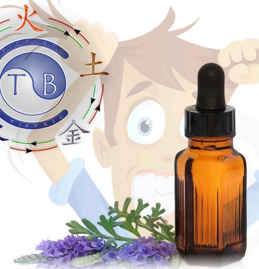 Aromaterapia: conozca sus bases y tratamientos en las principales afecciones (Botiquín de urgencias)