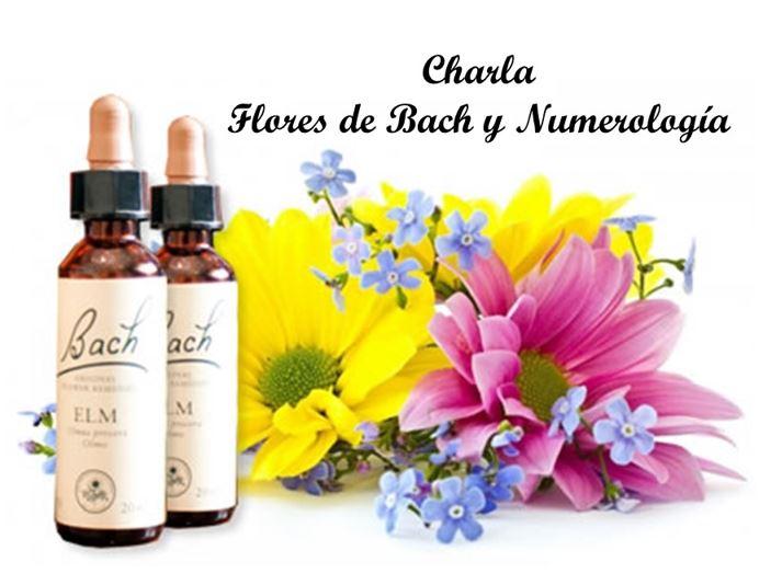 Flores de Bach y Numerología