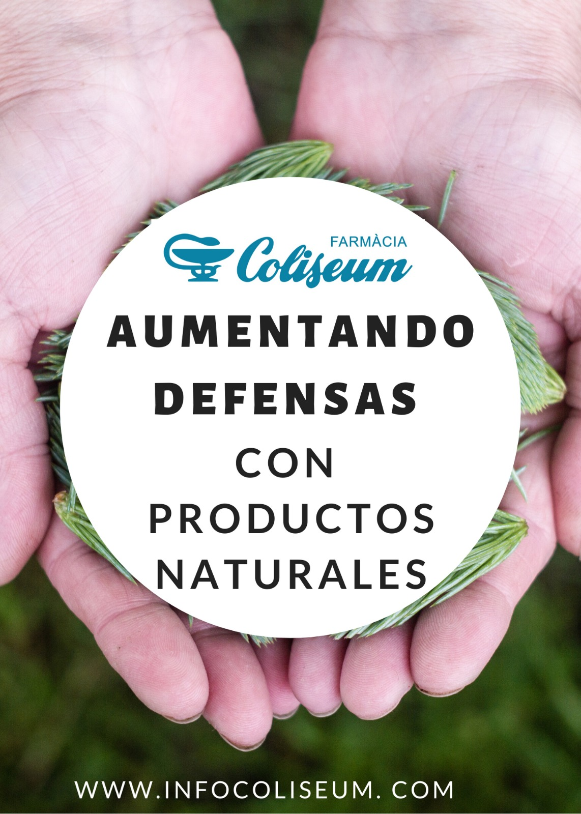 CANCELADO!! Activando las defensas con productos naturales